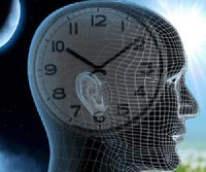 Внутренние часы организма